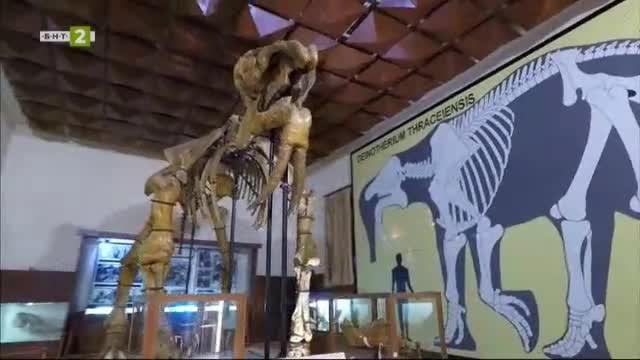 Палеонтологичният музей в Асеновград