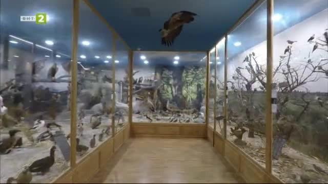 Регионален Природонаучен Музей - Пловдив