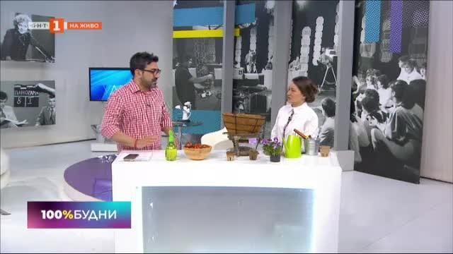 Как да отглеждаме зеленчуци в градски дом?
