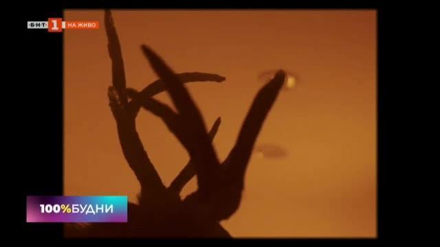 Замечтан инди поп и модерна визия в първото видео на Hug or Handshake