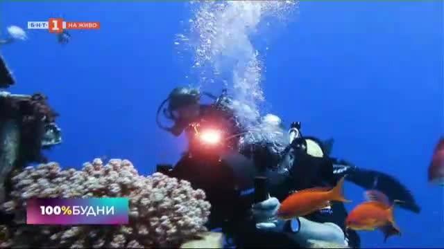 Морските приключения на един подводен оператор