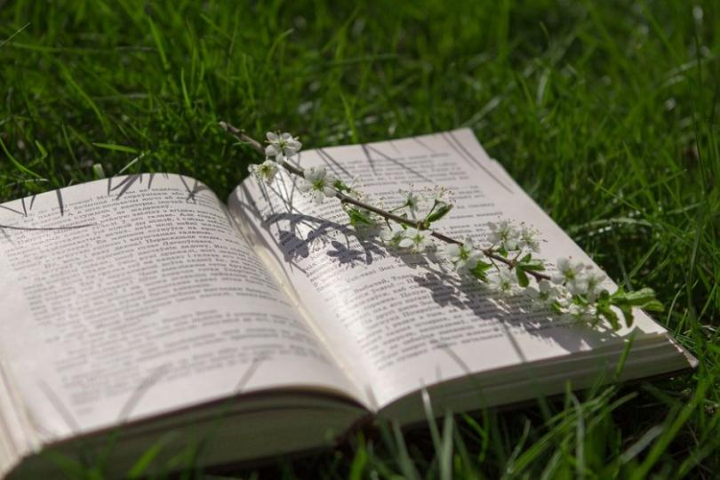 Пролетният базар на книгата ще се състои на открито