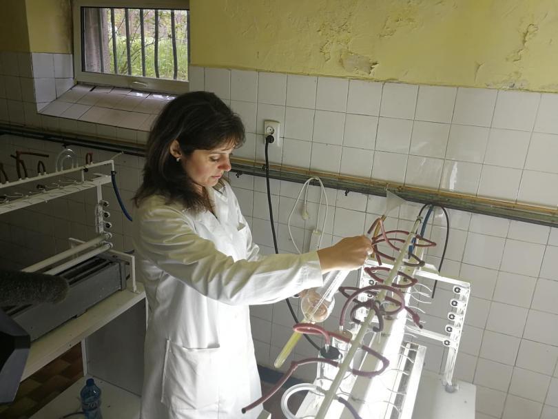 снимка 1 Иновативни технологични системи за производство на водораслова биомаса