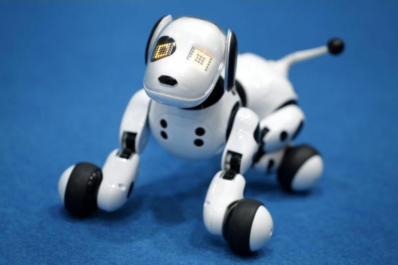 Могат ли кучетата роботи да заменят овчарските кучета?