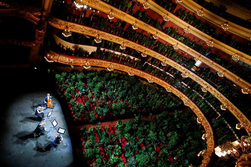 Концерт пред растения в Операта в Барселона