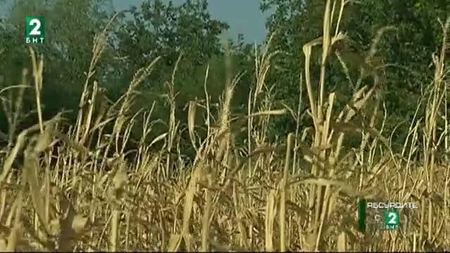 Схема за измами със земеделски земи се оказа законна