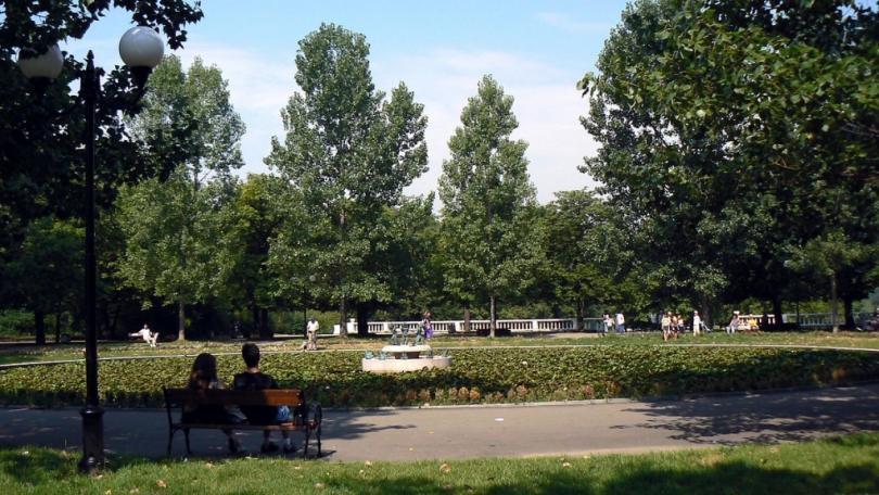 Трябва ли да има забрана на алкохола в парковете?