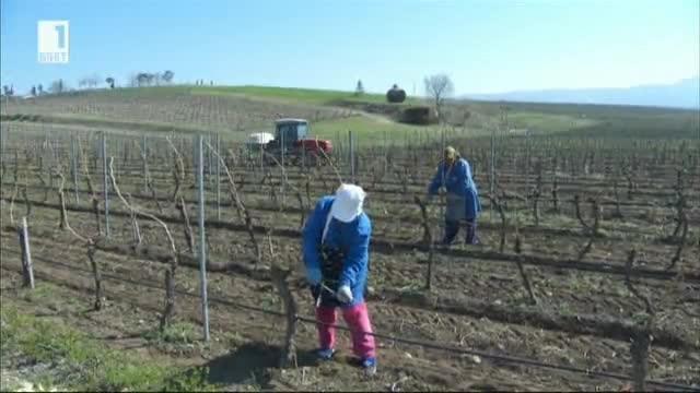 Българското земеделие през последните 20 години