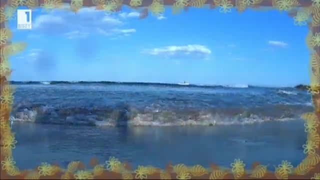 Как и къде се снима детския филм Моля те, Нептуне