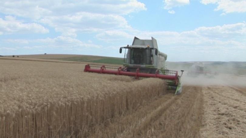 Инвестициите в земеделието - Десислава Танева в Денят започва