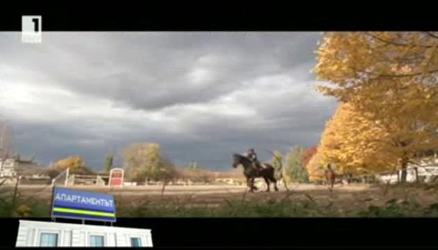Терапевтична езда