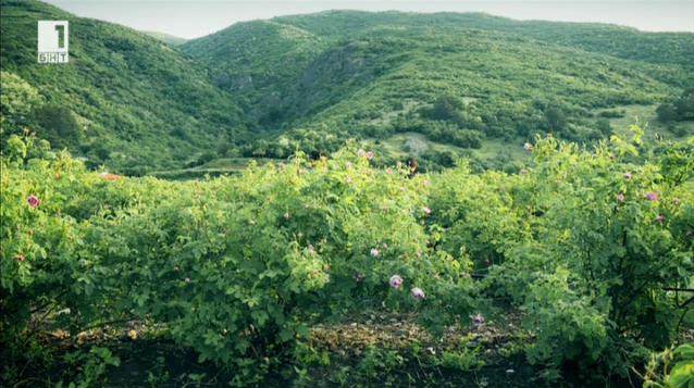 България - страната, за която знаем най-много, но не всичко