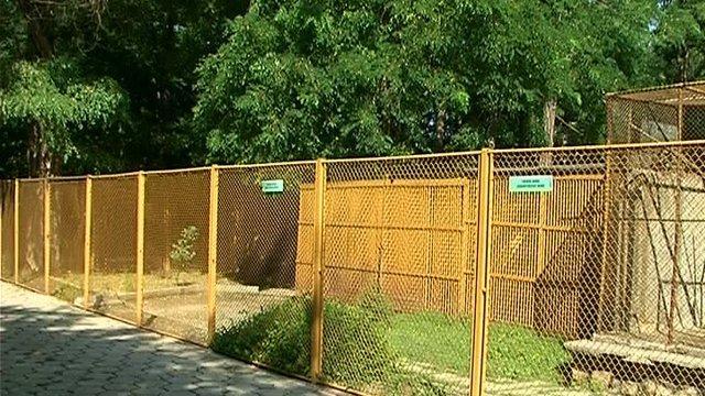 Кога ще отвори врати пловдивският зоокът