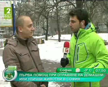 Първа помощ при отравяне на домашни или улични животни в София