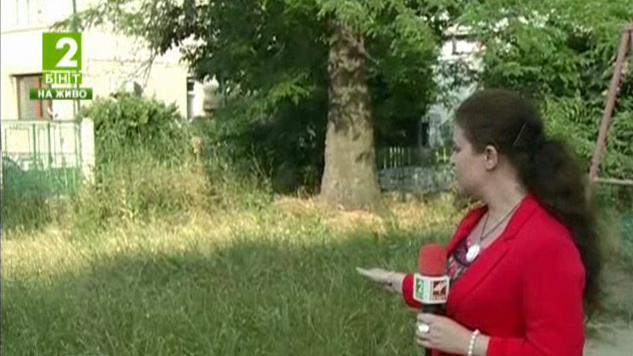 Бум на ухапаните от кърлежи във Варна