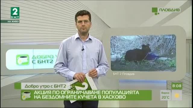 Започна акция по ограничаване популацията на бездомните кучета в Хасково