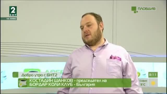 Национални киноложки изложби С.А.С. за Купа Пловдив 2017
