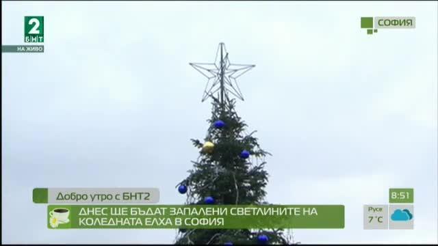 Днес ще бъдат запалени светлините на коледната елха в София