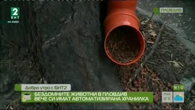 Бездомните животни в Пловдив вече си имат автоматизирана хранилка