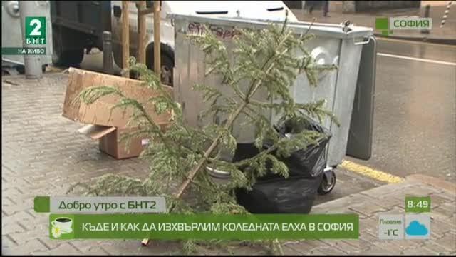 Къде и как да изхвърлим коледната елха в София