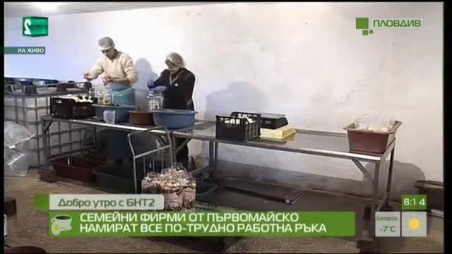 Семейни фирми от Първомайско намират все по-трудно работна ръка