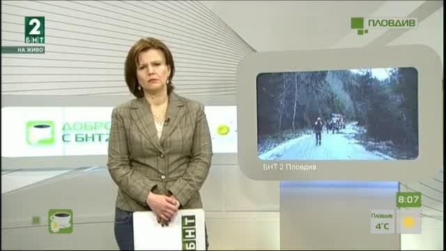 Щетите от ураганния вятър в горите в Смолянско са за над 2 милиона лева