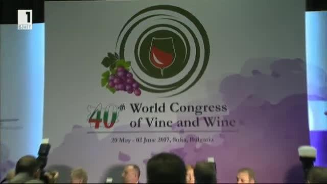 Българските амбиции в света на виното