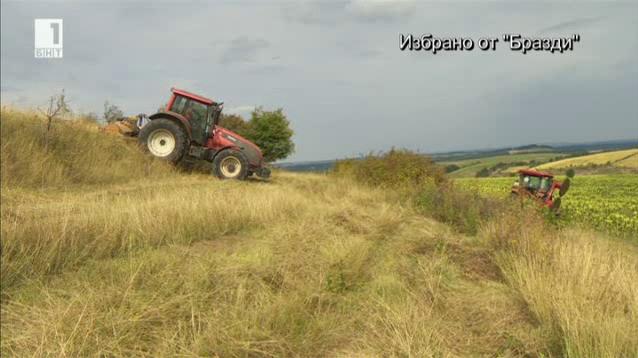 Млади български фермери, които произвеждат без помощ от европейски субсидии