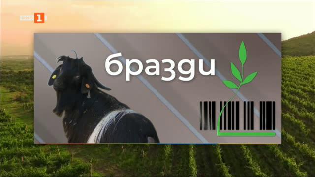Извънредното положение и аграрната икономика - избрано от Бразди