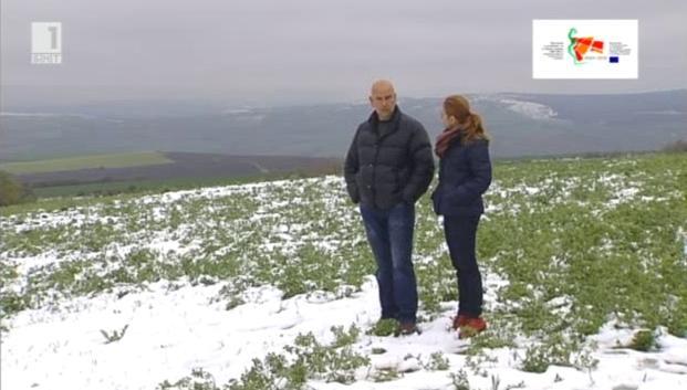 Евросредства променят български ферми