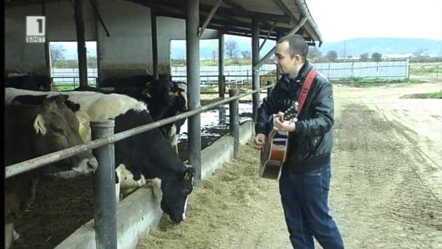 За кравите, баладите и китарата на Миро