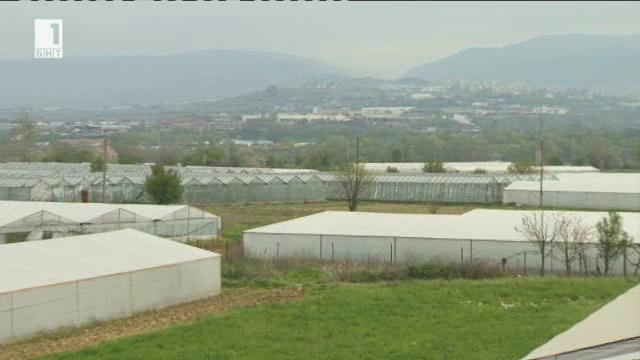 Възроденото оранжерийно производство по Долината на река Струма