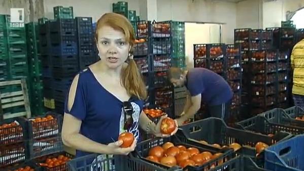 За предизвикателствата пред производителите на оранжерийни плодове и зеленчуци