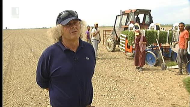 Италианецът Еро Фабрицио Фрески – най-големият производител на домати в България