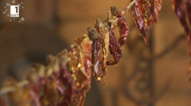 Как се отглеждат редки сортове люти чушки в едно софийско село