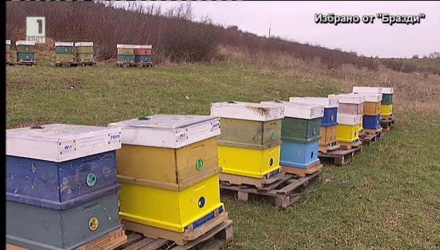 Модерни технологии в пчеларството