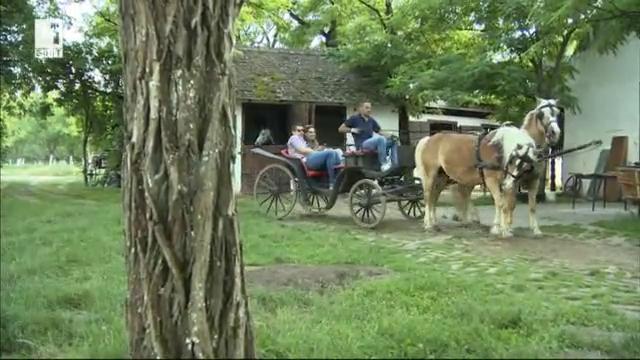 Селски туризъм във Войводина