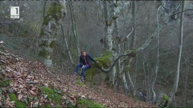 Два от най-интересните български природни парка