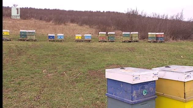 Модерните технологии в пчеларството