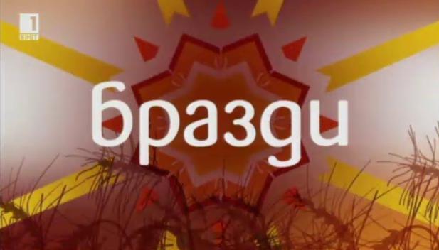 Бразди – 10 май 2014