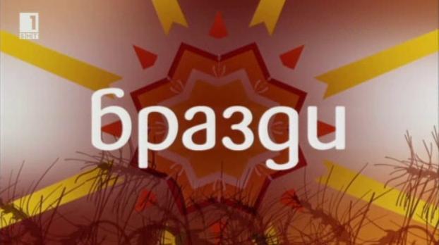 Култивираната боровинка – все още екзотична култура в България