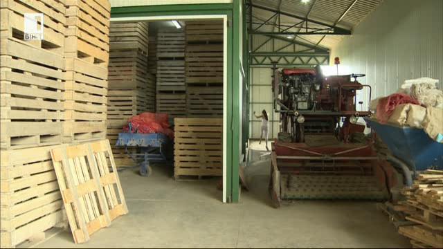 Войводина – как две поколения фермери отглеждат картофи