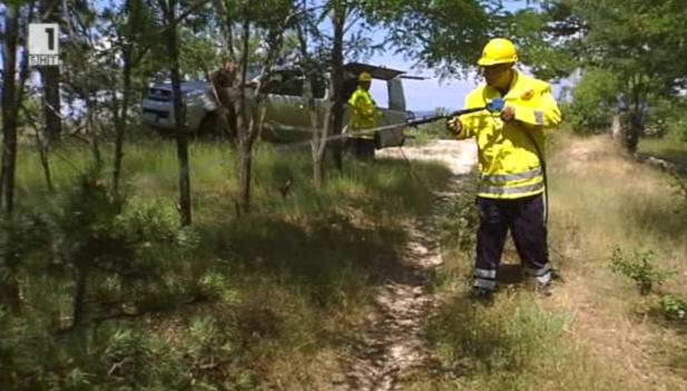 Как ще борим горските пожари
