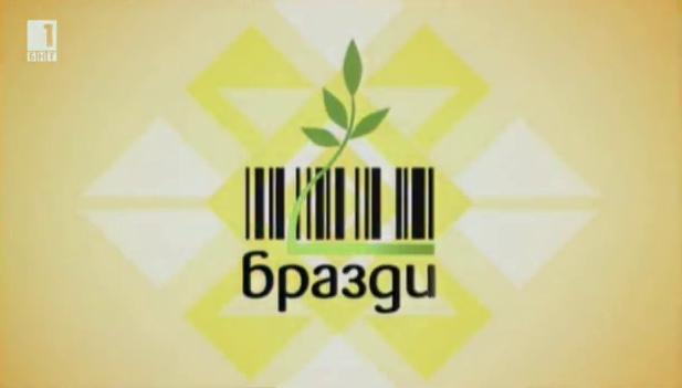 Заразен нодуларен дерматит вече и в България