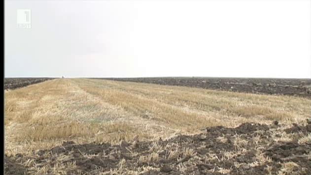 """Кога са застрашени българските фермери от показването на """"жълт"""" и """"червен"""" картон"""
