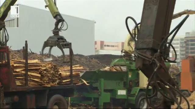 Какво ще спечели страната ни, ако се изгради една добре работеща система за използване на биомаса