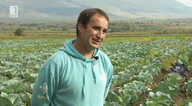Колко и какви млади фермери създадоха европейските субсидии у нас?