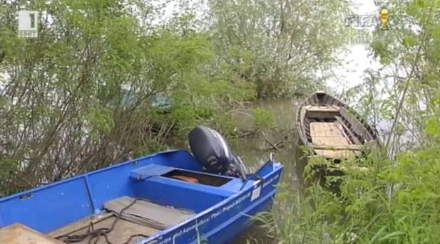 Защо стопанският риболов по Дунава намалява драстично?