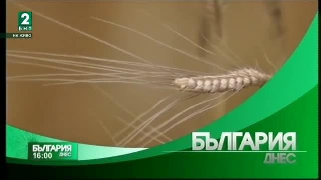 България днес – 14.07.2017 – излъчване от Варна