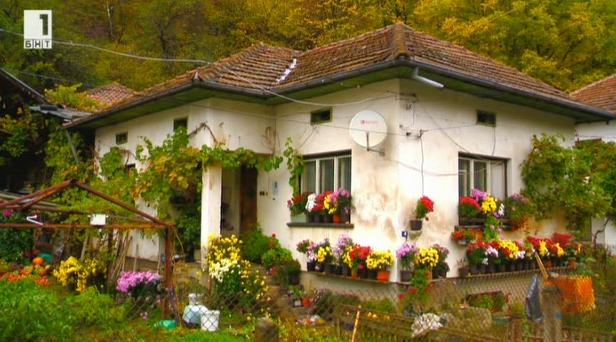 България от край до край. Как да оцелееш и да победиш самотата